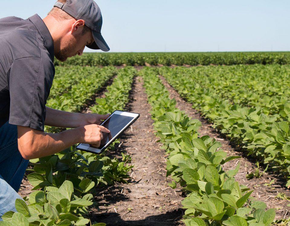 ventajas-internet-agropecuario