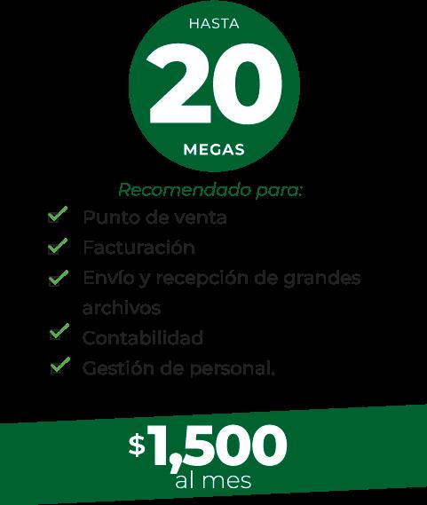 plan-20-completo